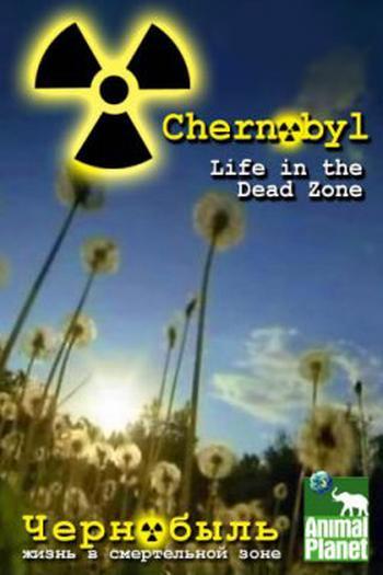 Czarnobyl �ycie w strefie �mierci / Chernobyl Life in the Dead Zone (2007)  PL.DVBRip.XviD / Lektor PL